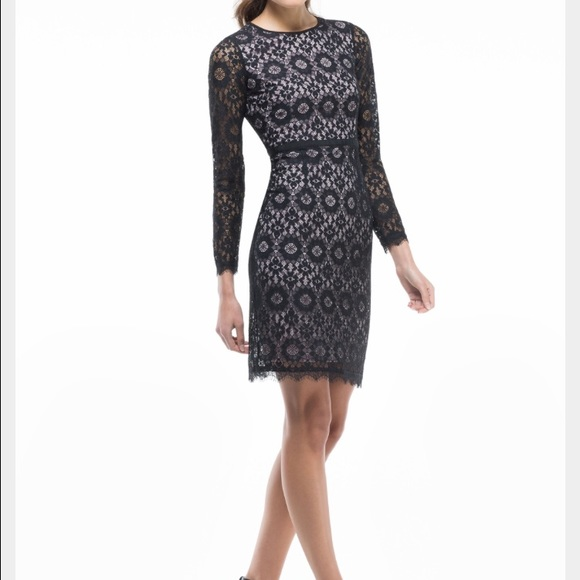 Black And Blush Pink Lace Maggy London Dress