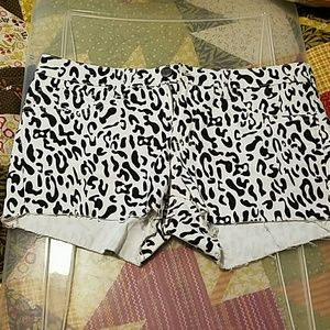 Pants - Brand new Animal print short shorts