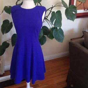 Rebecca Taylor Dresses & Skirts - Price reduced! New Rebecca Taylor Blue Dress