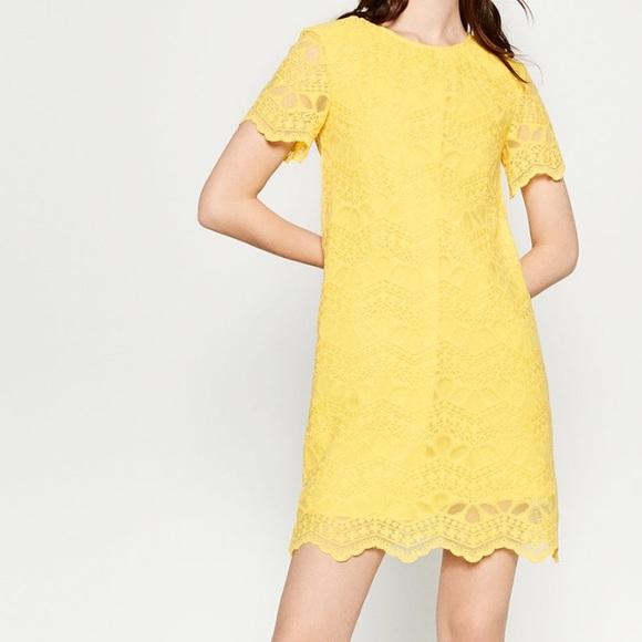 378732a0 Zara Dresses | Yellow Short Sleeve Lace Dress | Poshmark