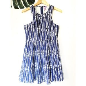 Francesca's Collections Dresses & Skirts - Francesca's Blue and White Leaf Print Dress