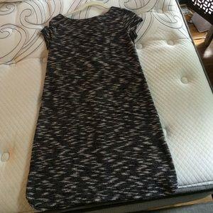 Ann Taylor LOFT Black and White Knit Shift Dress