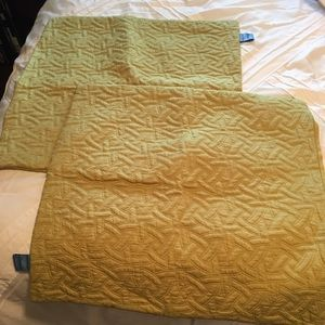 Other - VERA WANG GREEN SQUARE PILLOW CASES