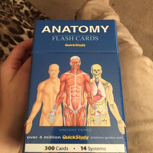 Exelent Anatomy Quick Study Guide Ensign Anatomy And Physiology