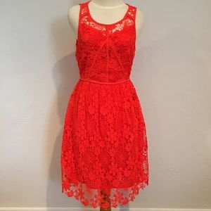 SUGAR + LIPS Short Sleeve Orange Lace Dress S NWT
