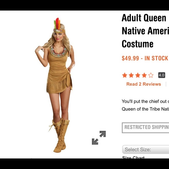 indian princess halloweentheme costume