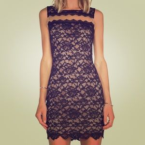 Bailey 44 Autumn Lace Dress in Black