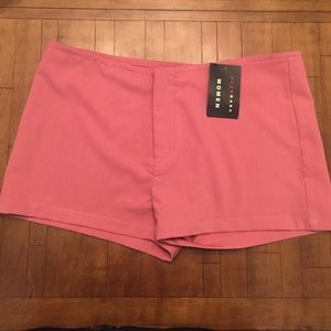 Pink Shorts NEW (L)