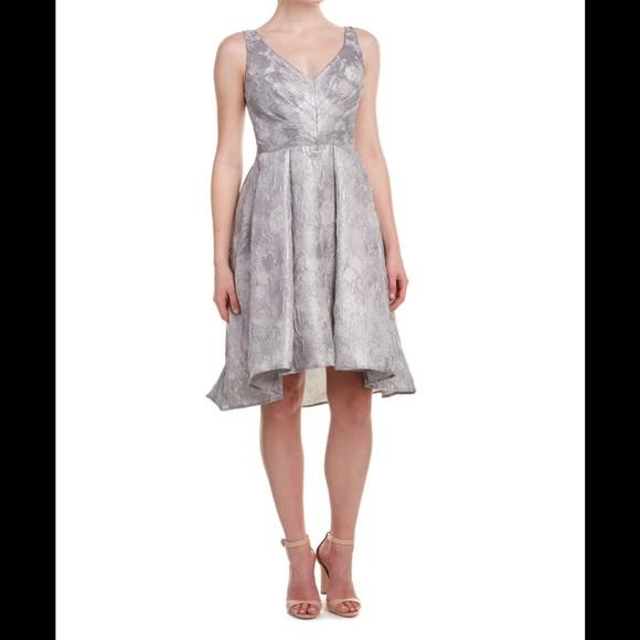 26ca753dbe57 Eva Franco Zander Dress in Platinum