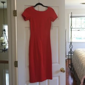 NWT Zara Trafaluc Dress