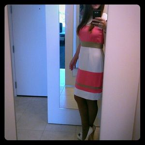 Dresses & Skirts - 🌹🌱Striped Dress