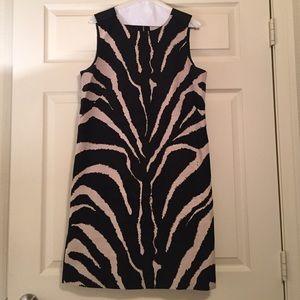 LOFT Zebra Print Shift Dress