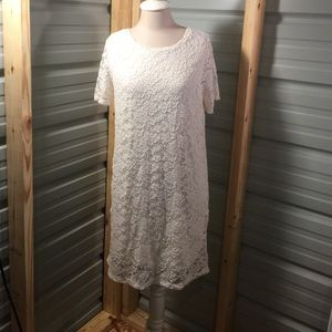 NWOT off white lace dress, large