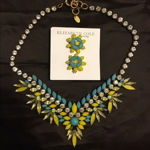 Brand New Elizabeth Cole Necklace and Earring Set