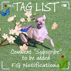 FG TAG LIST COMMENTS FULL. PLEASE SEE NEW POST.
