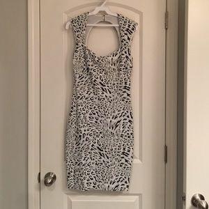 Animal Print Cache Dress