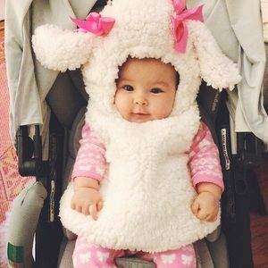 Other - 6-12 month lamb costume