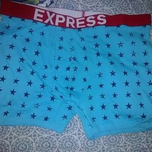 Express Other - NWOT Boxer Briefs