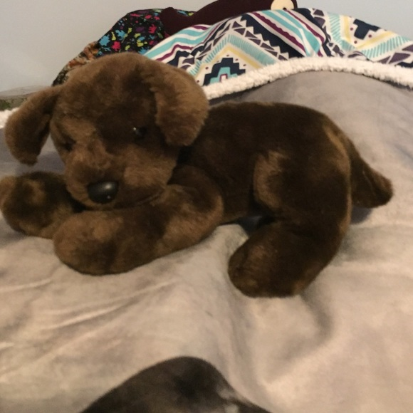 Other Stuffed Animal Chocolate Lab Puppy Poshmark