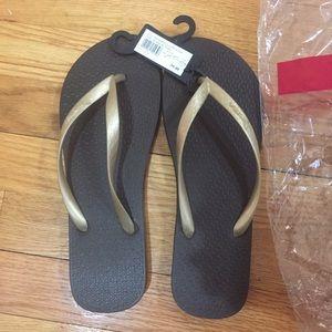 Ipanema Shoes - NWT ipanema brown sandals