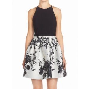 Adrianna Papell Dresses & Skirts - Adrianna Papell Jersey & Jacquard Fit &Flare Dress