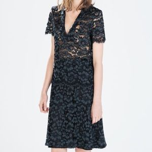 Zara Dresses & Skirts - ZARA Blue Lace Floral Flower A Line Skirt XS