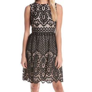 Tommy Hilfiger Black Lace Dress