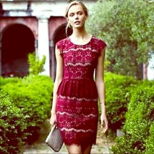 ✨NWT Maeve Anthropologie Lace Dress✨