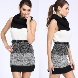 Colorblock Knit Cowl Neck Belted Dress