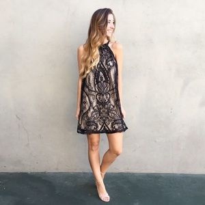 | new | lace overlay dress