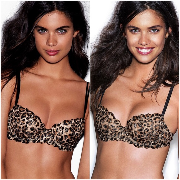 e59421945605d Leopard Lace Animal Print Flirt Date Push Up Bra