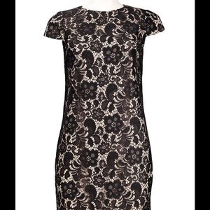 *NWT* Ivy & Blu Black & Nude Stretch Floral Dress