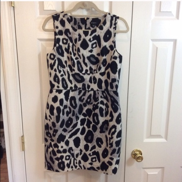 Ann taylor white leopard dress