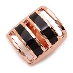 Pamela Love Jewelry - Pamela Love Inlay Path Ring Rose Gold Onyx