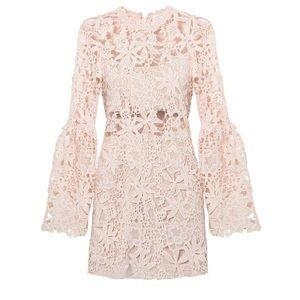 Endless rose lace dress