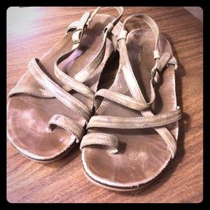 Chacos Shoes - Chacos!