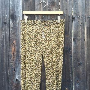 Icing Pants - See Through Cheetah Leggings