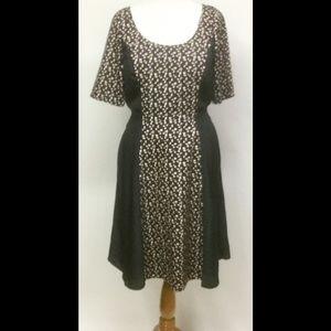 New Eshakti Floral Print Fit & Flare Dress L 14