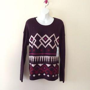 NWT maroon chunky sweater