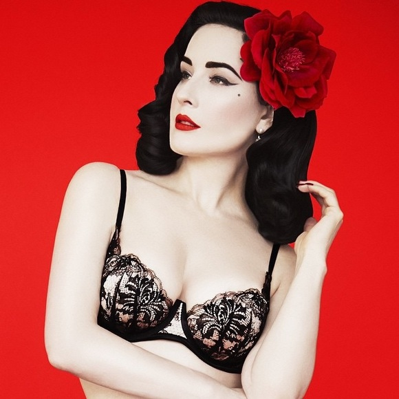 73b4df4fb66 Dita von Teese Other - DITA VON TEESE Madison Ave Plunge Bra 32B