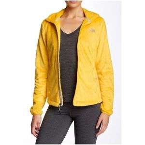 The North Face Osito Jacket in Dandelion Yellow