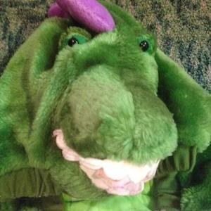 Shirts & Tops - Dinosaur Dragon costume coat