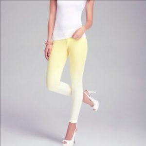 bebe Pants - Bebe Ombré Skinny pants
