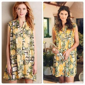 🚫Sold🚫Anthropologie Arboretum Shirtdress
