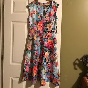 Scuba Sleeveless Floral Dress NWT