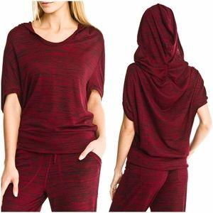 ABS Allen Schwartz Sweaters - ABS Hoodie & Jogger Pants Set