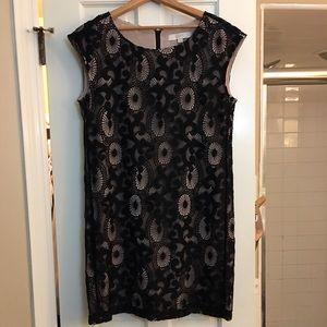 Ann Taylor LOFT Black lace shift dress