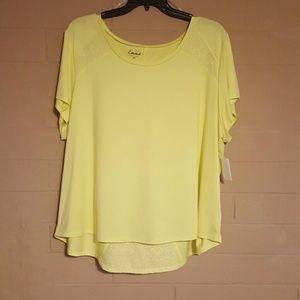 Plus Size Yellow Active Top