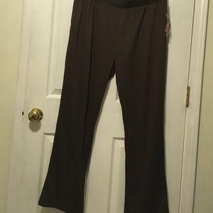 activology Pants - New activilogy pants
