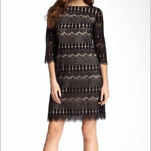 Eliza J Lace Sheath Dress Nordstrom
